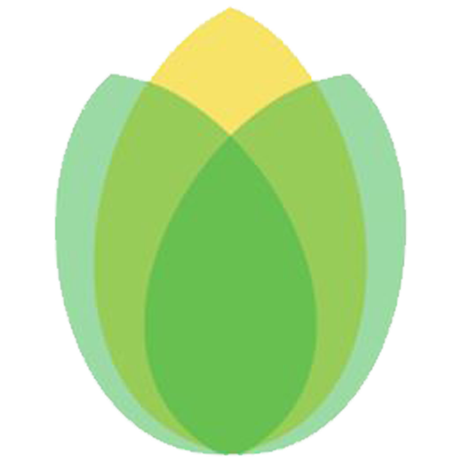 Corn Icon